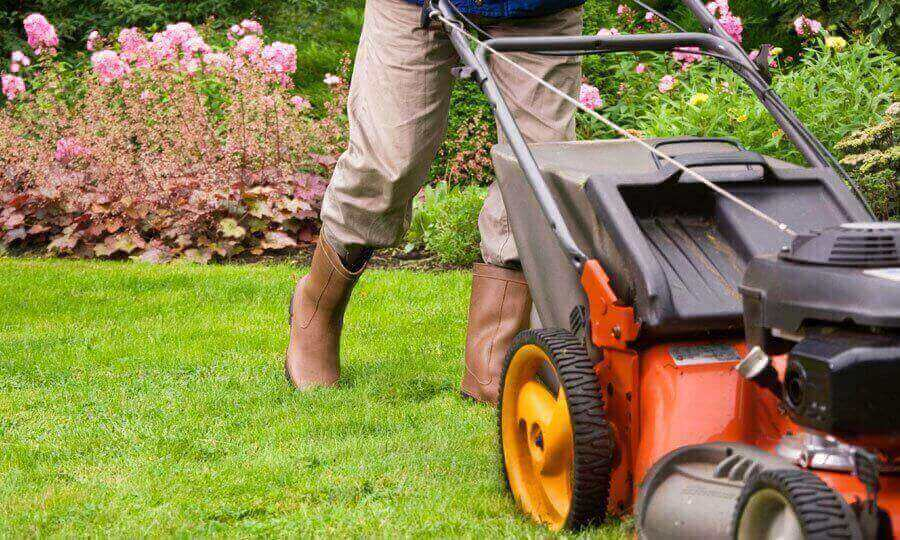 Commonly Ignored Best Practices of Commercial Landscape Maintenance